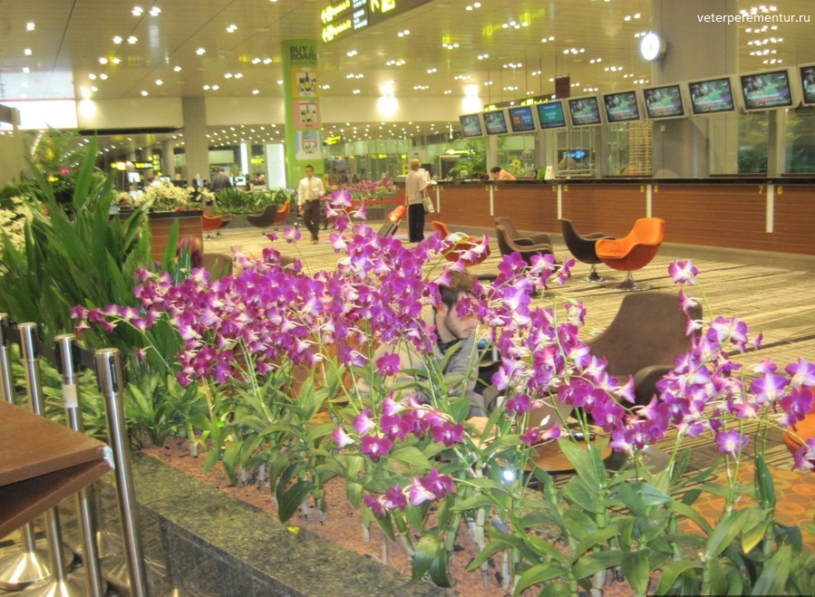 Aeroport-Tchangi (4)