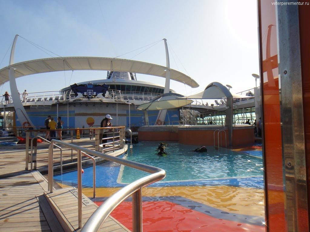 Independence of the Seas, бассейн