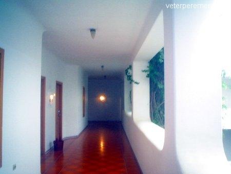 Komfortabelnyy-otel-v (12)
