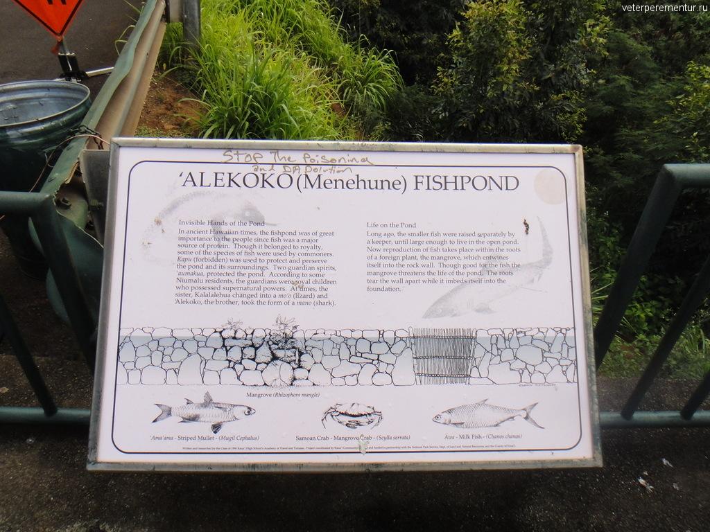 Alekoko, Menehune Fishpond, Гавайи