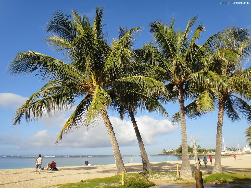 Пляж в Гонолулу