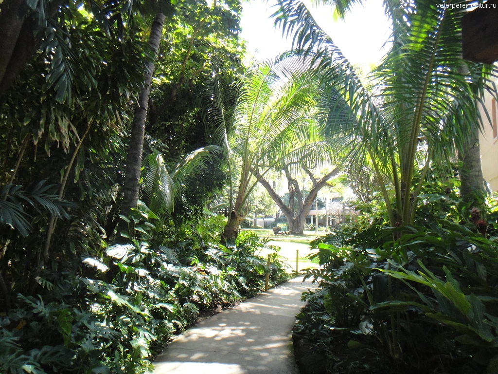 Гонолулу, Оаху