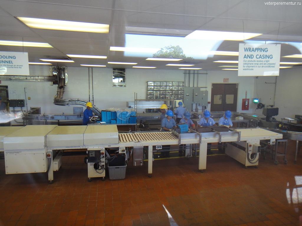 фабрика по производству орехов Макадамия