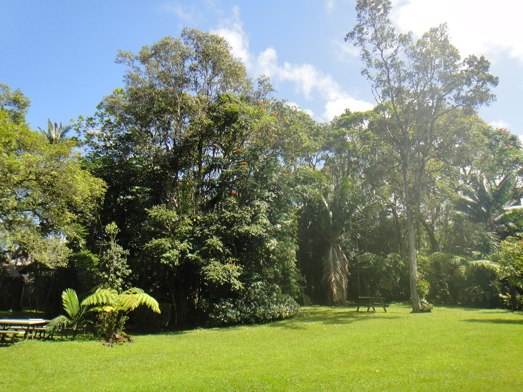 Зоопарк, Биг Айленд, Гавайи