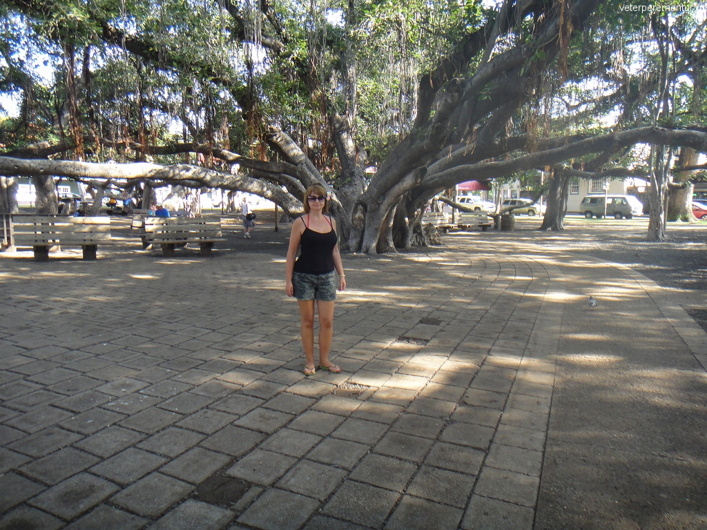Banyan Tree park, Лахайна