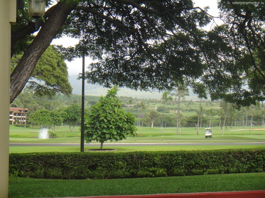 Поле для гольфа, Мауи
