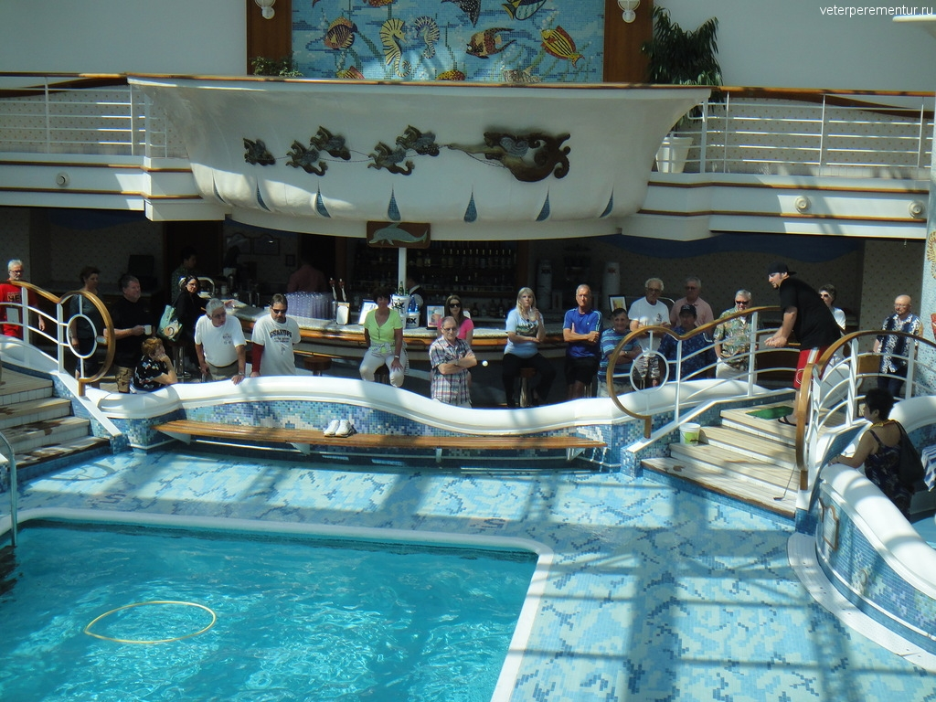 Развлечения у бассейна на Star Princess