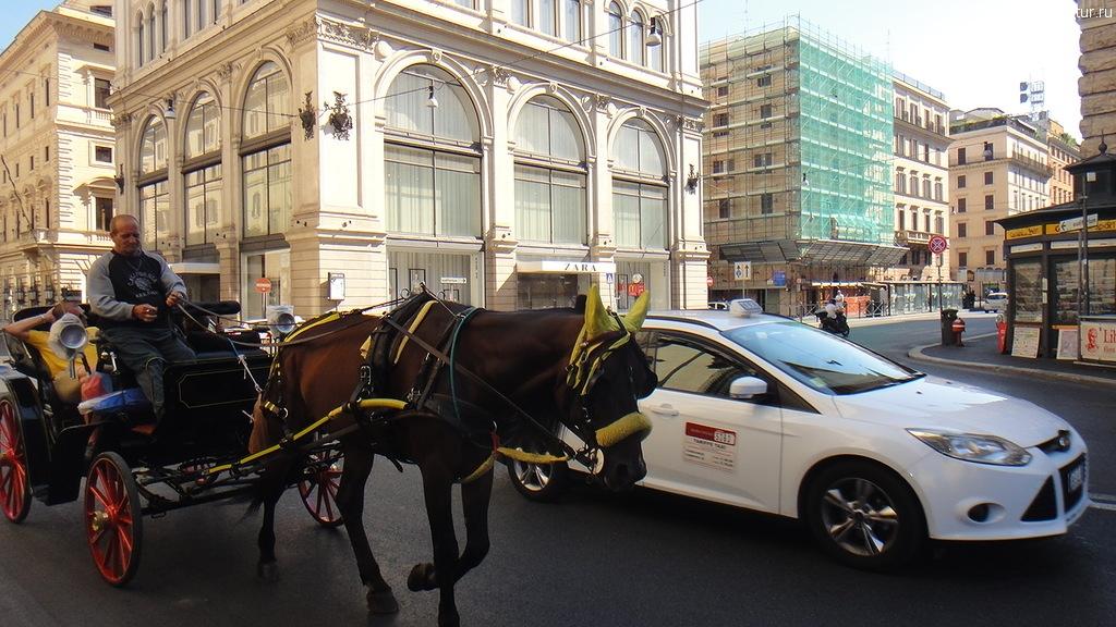 лошадь в Риме