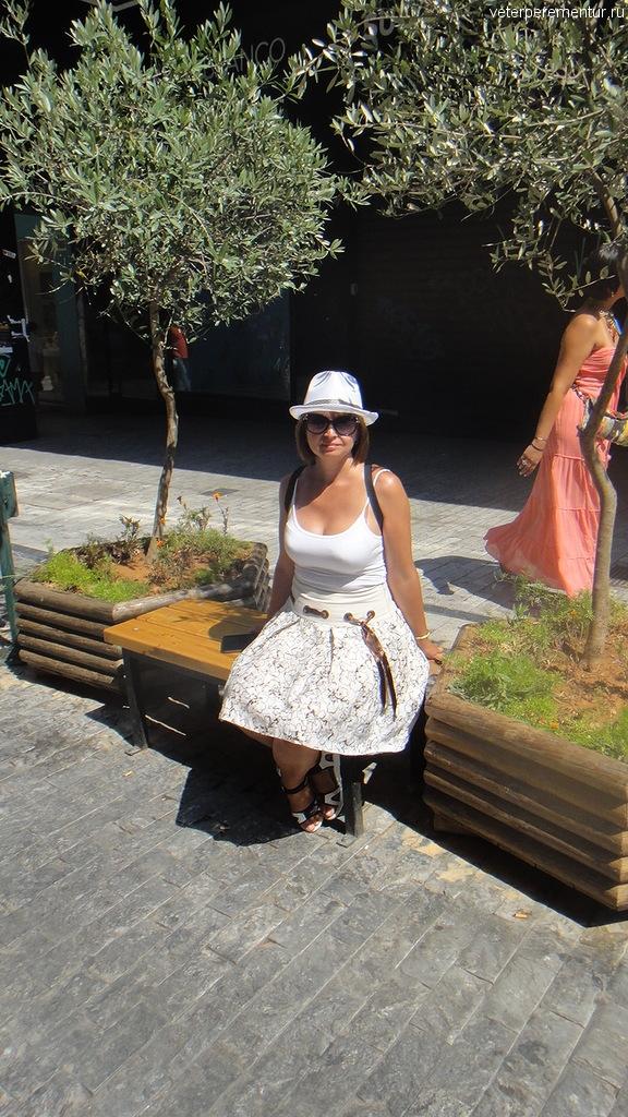 Оливковые деревья на улицах Афин