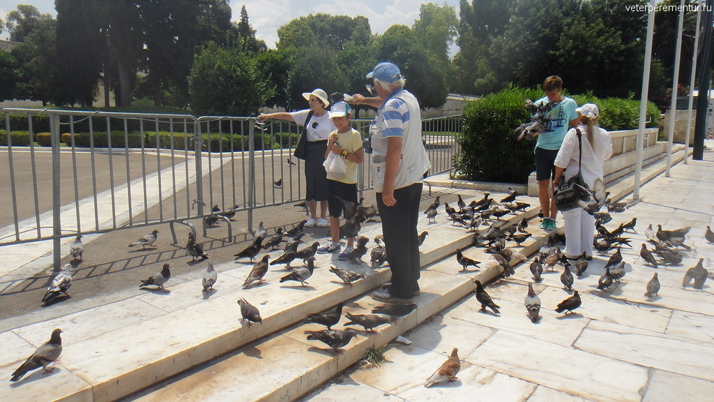 Голуби в Афинах