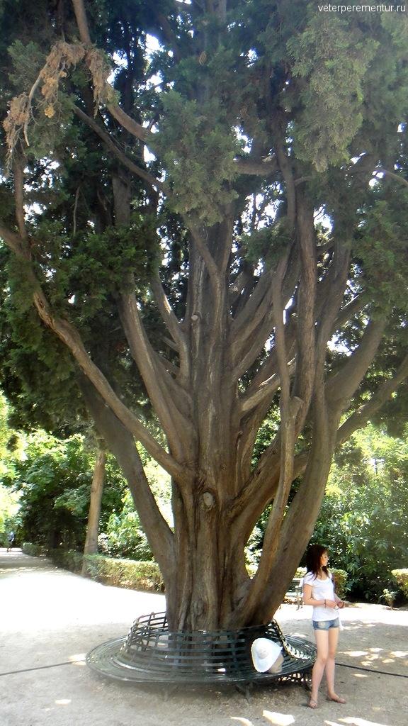 Парк в Афинах