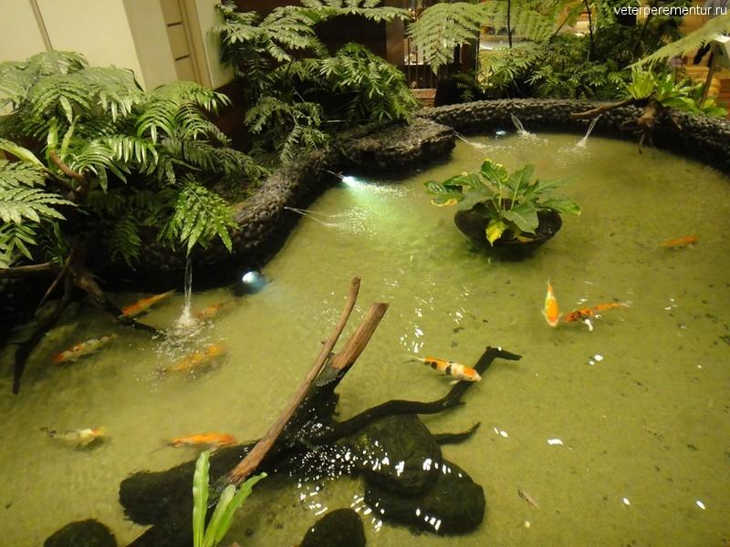 пруд в Enchanted Garden, аэропорт Чанги, Сингапур