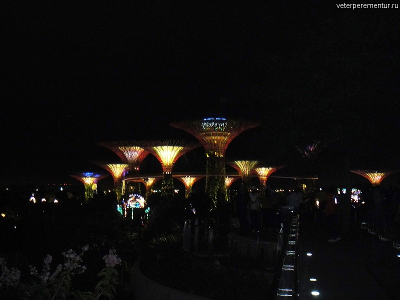 Gardens by the Bay, вечер