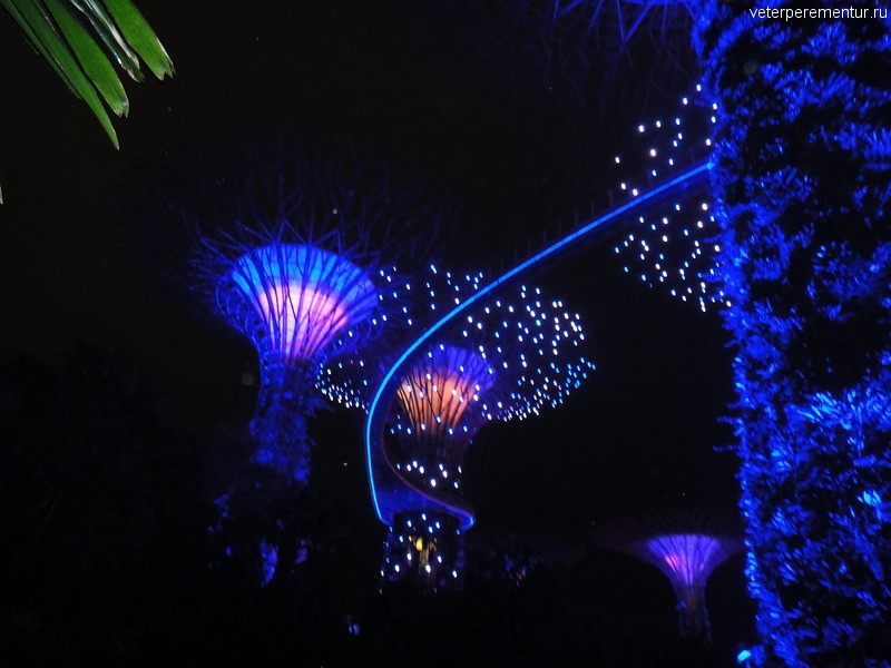 Gardens by the Bay, Шоу Garden Rhapsody