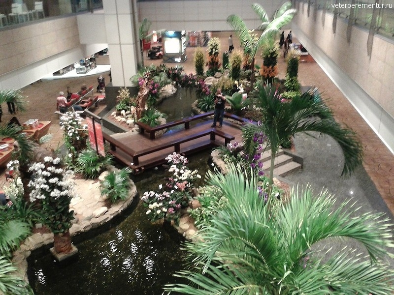 ORCHID GARDEN & KOI POND , аэропорт Чанги, Сингапур
