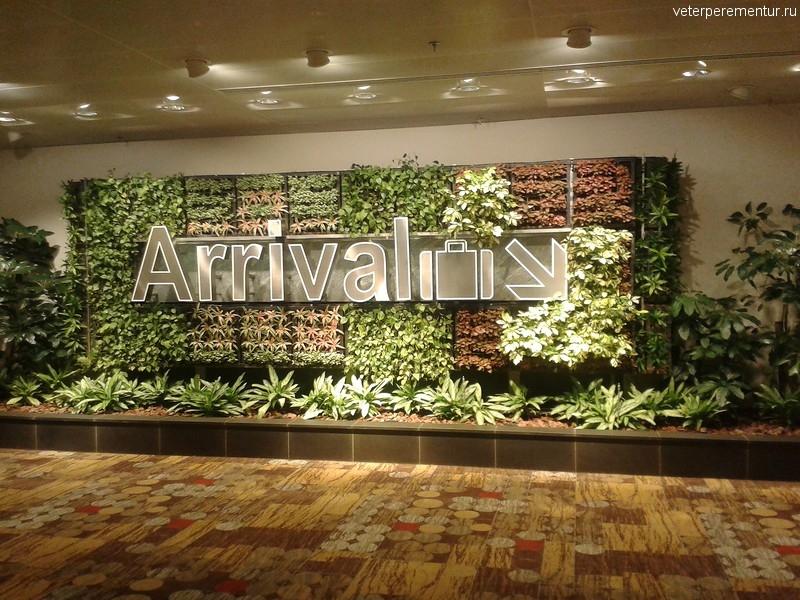 Указатель в аэропорту Чанги, оформленный растениями