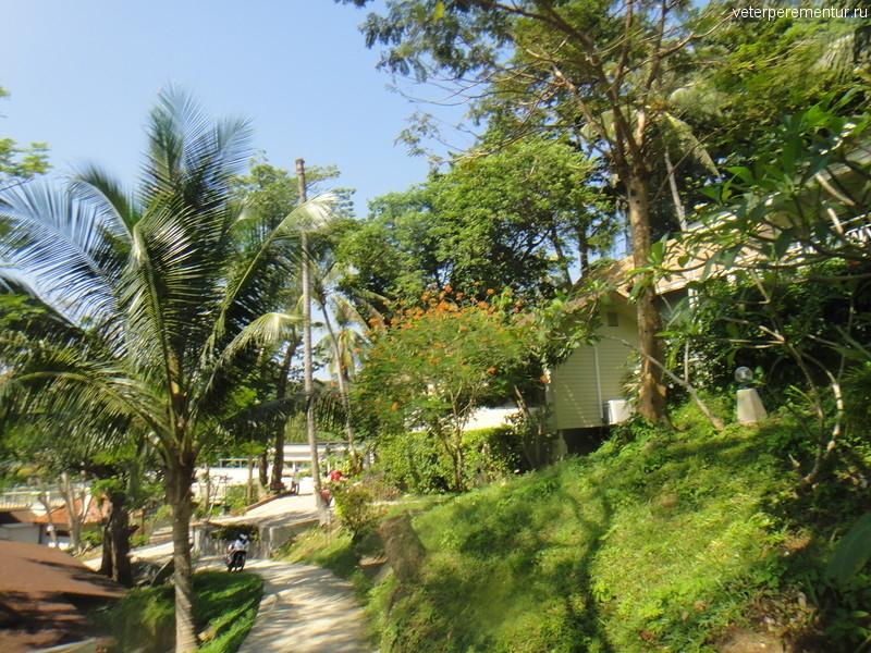 Дорога к пляжу на Пи Пи, Таиланд