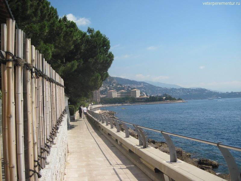 Монако, дорога вдоль моря