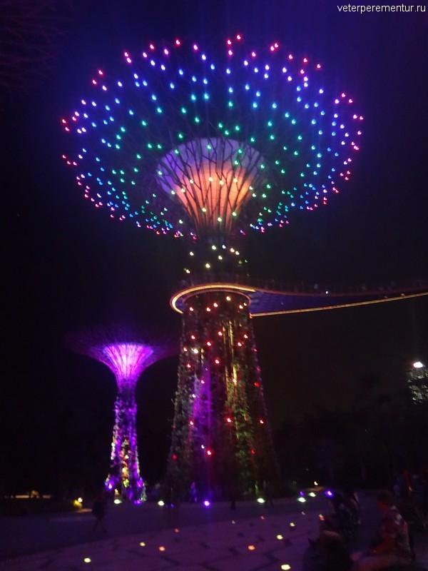 Garden Rhapsody, Сингапур