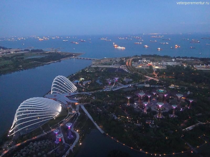 фото садов и залива со смотровой площадки Marina Bay Sands