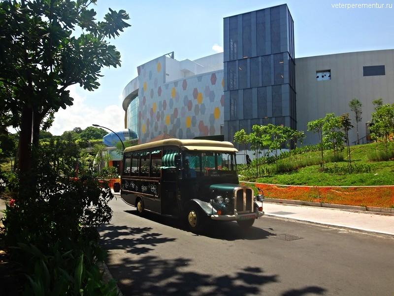 Туристический транспорт на Сентозе