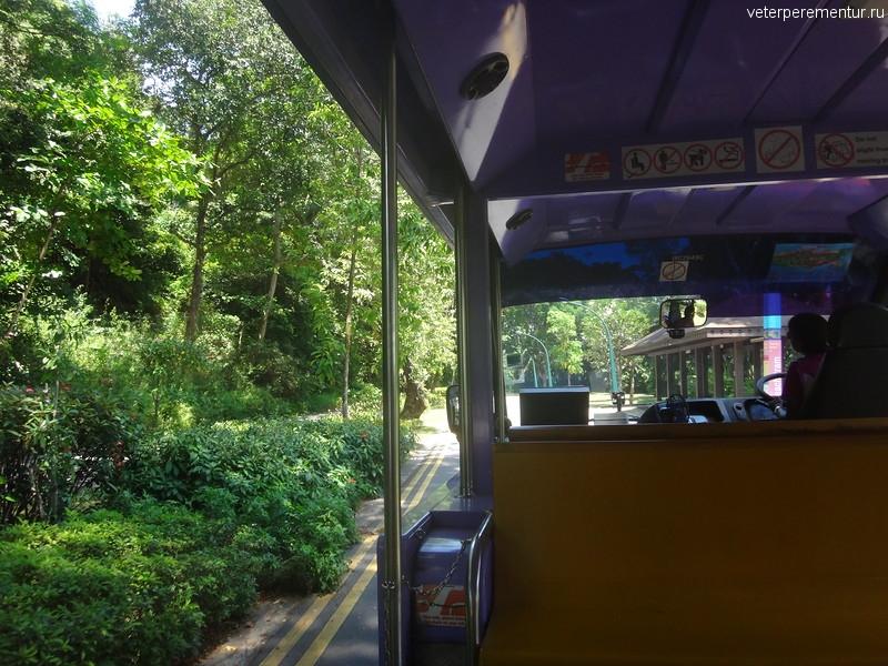 Туристический паравозик на Сентозе