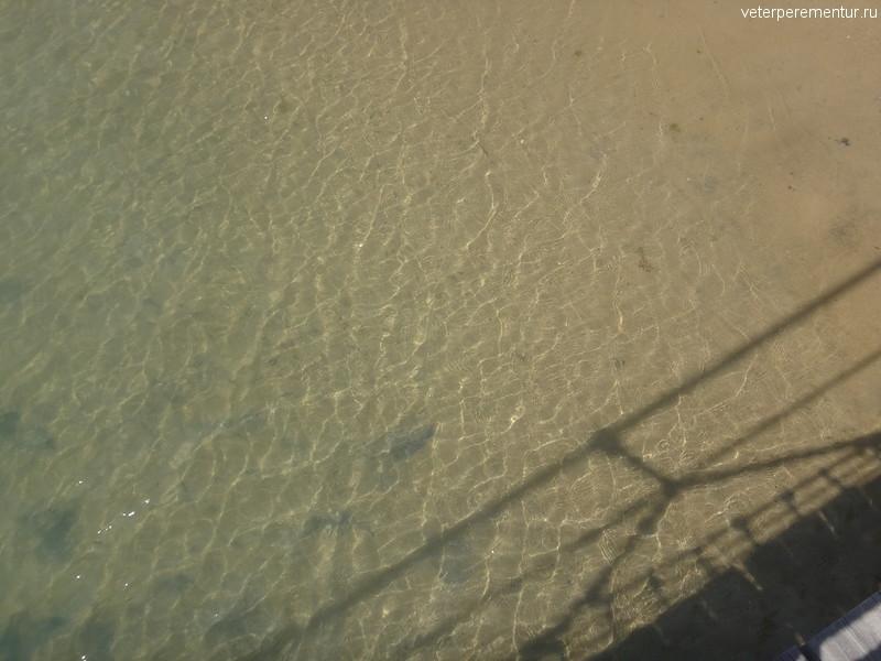 Прозрачная вода под мостом, Сентоза