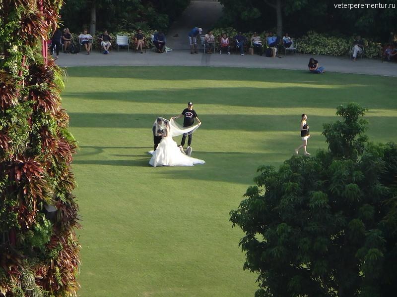 Свадебная фотосессия, Сады у Залива (Gardens by the Bay)