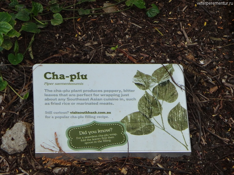 Брисбен (Brisbane), пояснительные таблички в ботаническом саду
