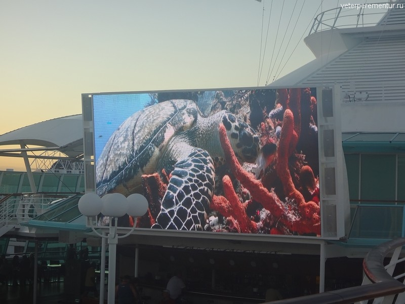Rhapsody of the Seas, видео на большом экране