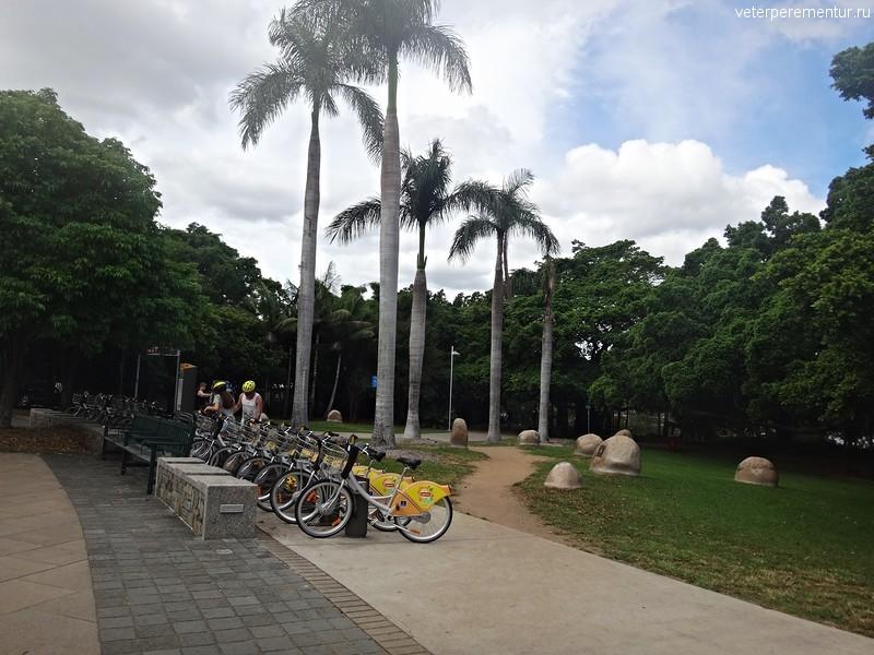 Аренда велосипедов в Брисбене