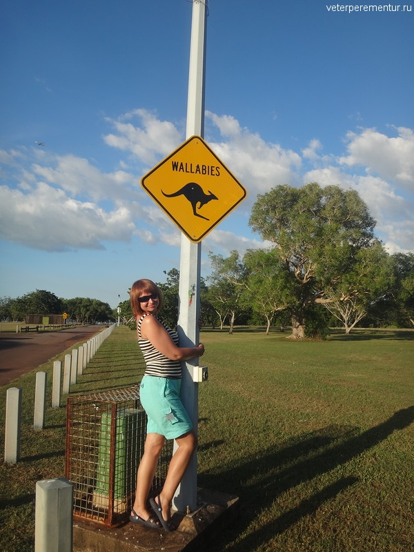 """Предупреждающий знак """"осторожно, кенгуру"""" в Австралии"""