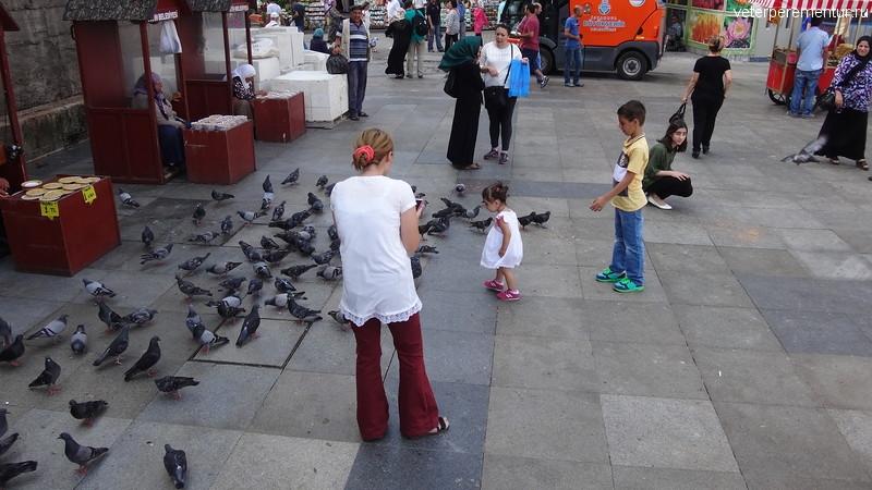 Кормление голубей, Стамбул