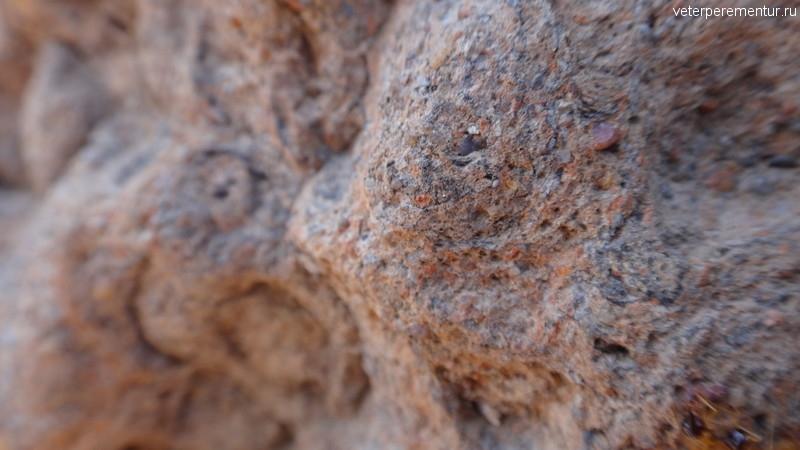 Структура термитника, Личфилд, Австралия