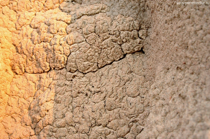 Структура термитника, Австралия