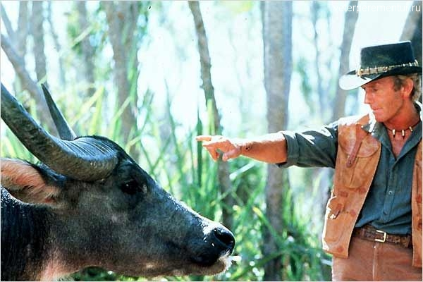 """Кадры из фильма """"Данди по прозвищу Крокодил"""""""