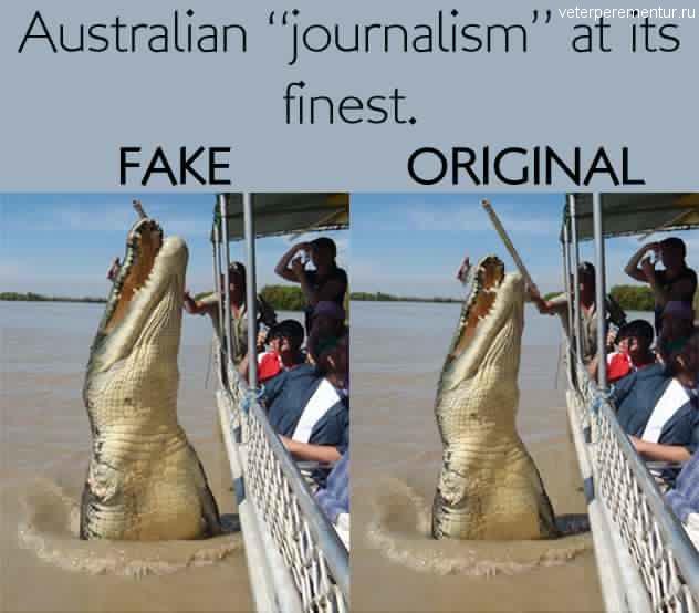 Крокодил Брутус, Австралия