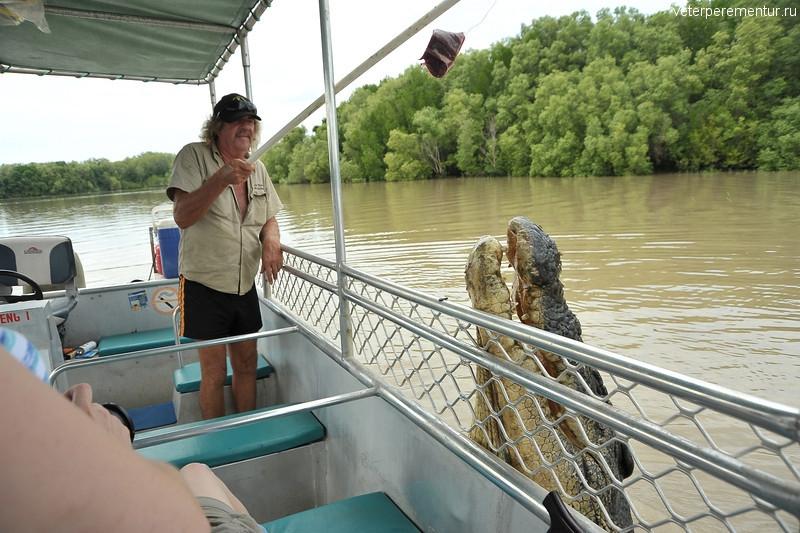 Крокодил, Spectacular Jumping Crocodile Cruise, Личфилд, Австралия