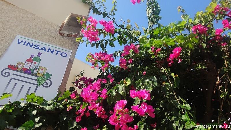 Санторини, реклама вина