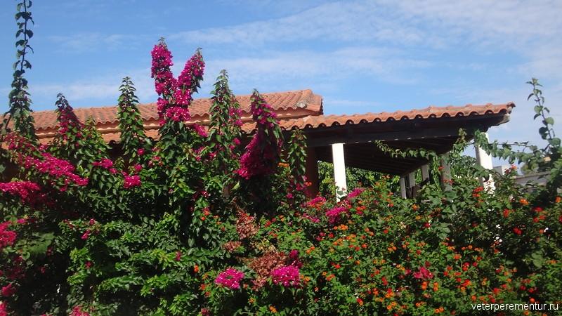 дом среди цветов, Греция
