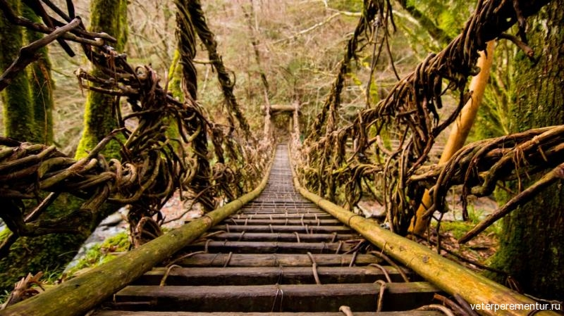 shikoku-japan-vine-bridge