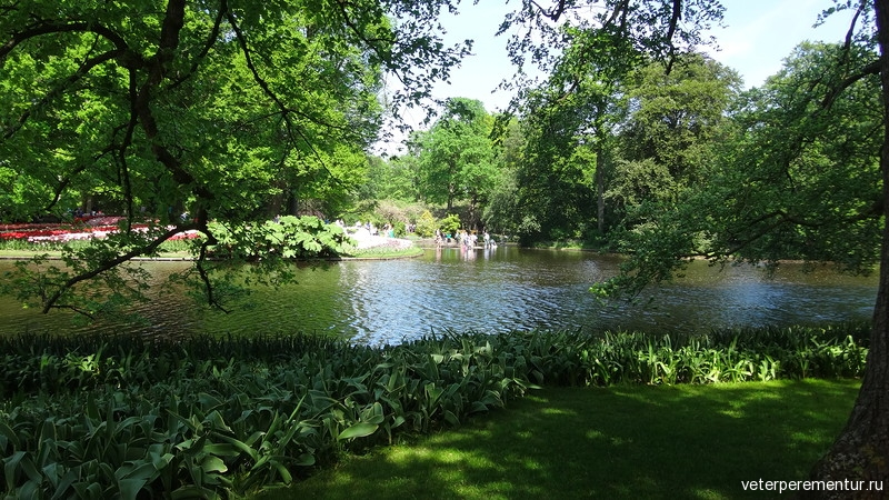 Парк цветов Keukenhof, озеро
