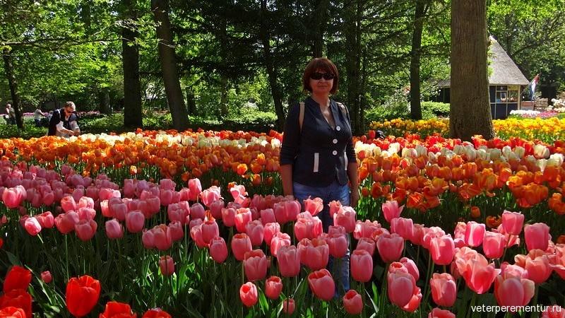 Голландия, парк тюльпанов