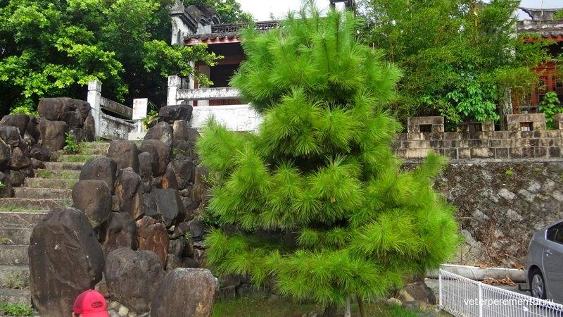 Kume Shiseibyo 久米至聖廟
