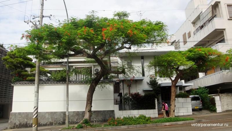 Naha (那覇) /Okinawa, Japan