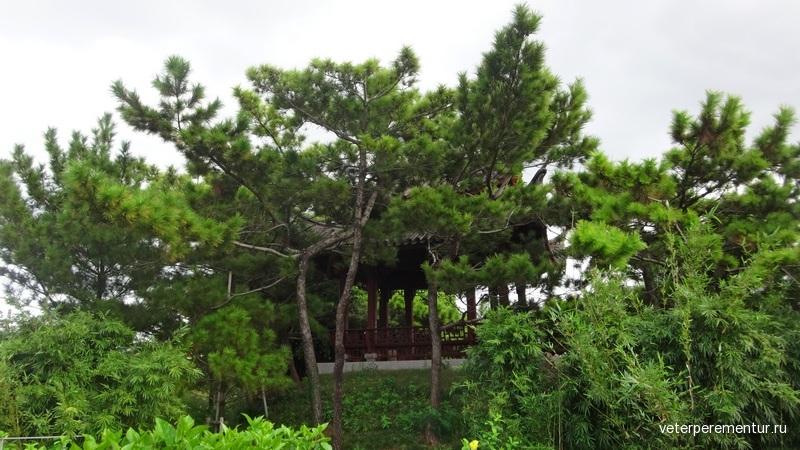 Fukushu-en Garden 福州園, Naha, Okinawa