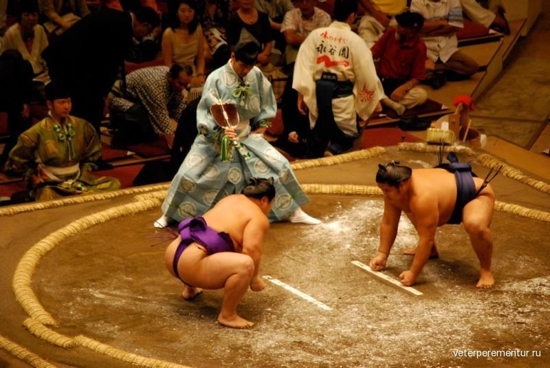 sumo-stadium-japan-tokyo
