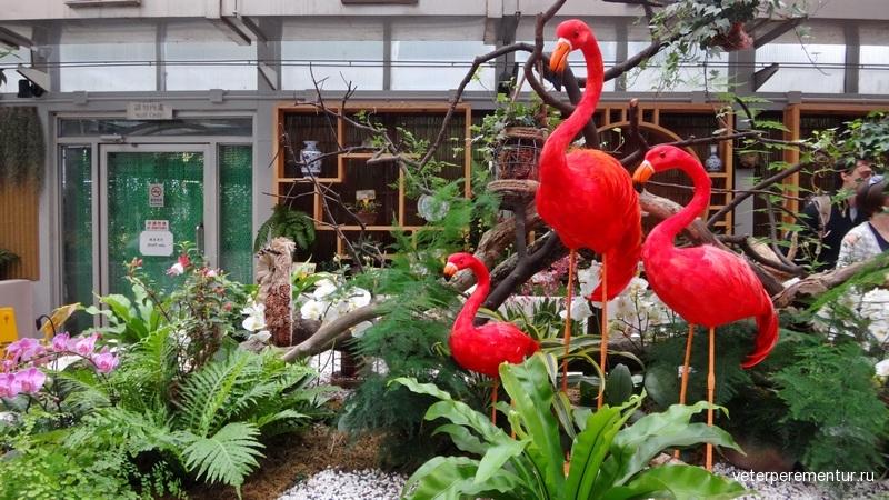 Ботанический сад Гонконга