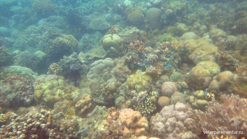 Снонклинг, Филиппины