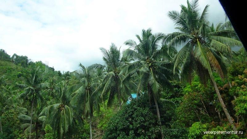Дорога из Моалбоала в Себу